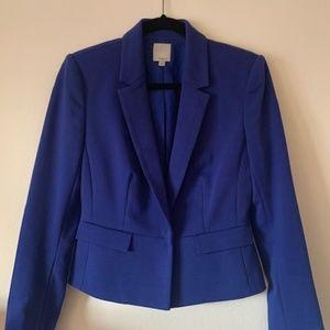 Halogen Blue Blazer (size 6)